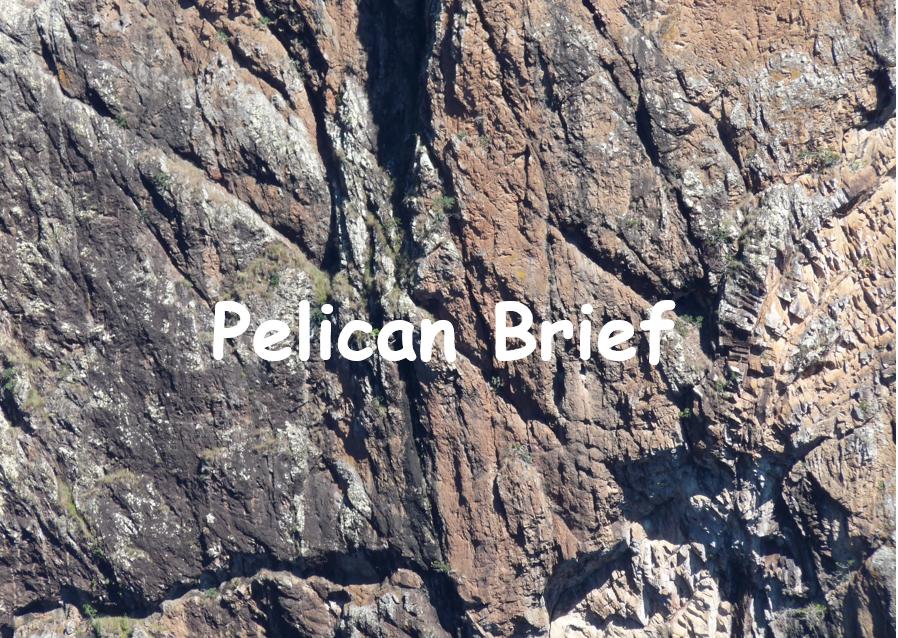 Pelican Brief